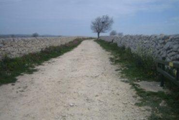 In cammino…